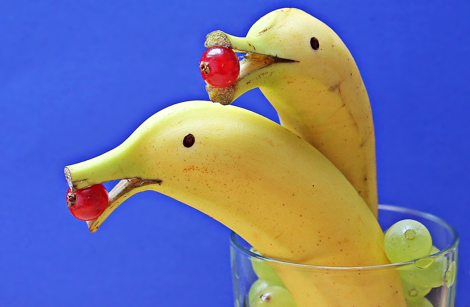 delfin-bananas-1737836_960_720